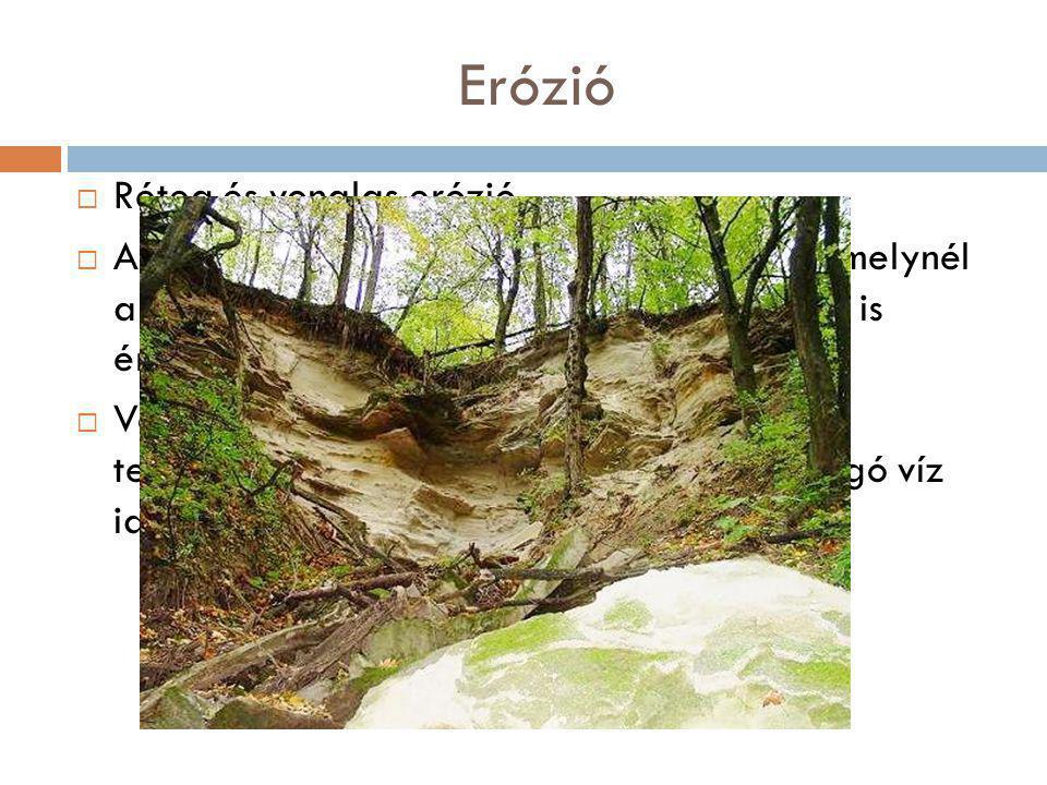 Erózió  Réteg és vonalas erózió  A rétegerózió az a talajpusztulási forma, amelynél a víz hatása a szinte teljesen sík területeken is érvényesül. 