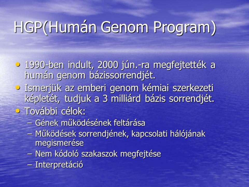 HGP(Humán Genom Program) 1990-ben indult, 2000 jún.-ra megfejtették a humán genom bázissorrendjét. 1990-ben indult, 2000 jún.-ra megfejtették a humán