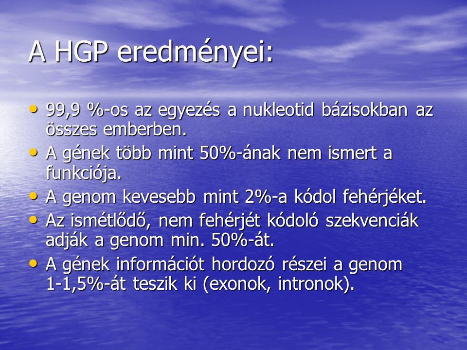 A HGP eredményei: 99,9 %-os az egyezés a nukleotid bázisokban az összes emberben. 99,9 %-os az egyezés a nukleotid bázisokban az összes emberben. A gé
