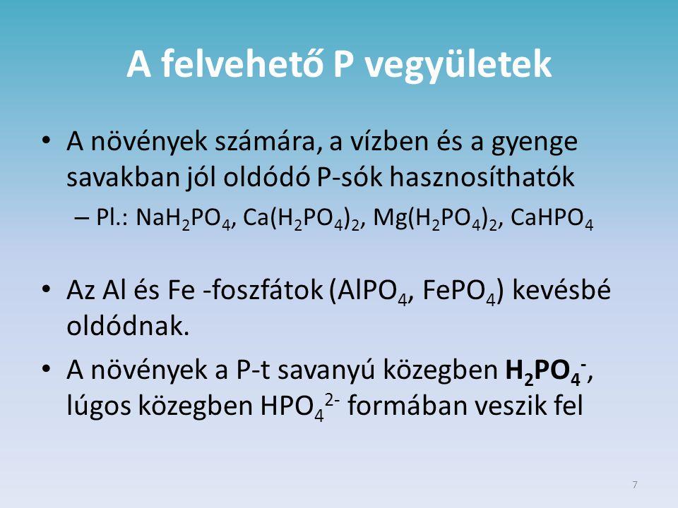 7 A felvehető P vegyületek A növények számára, a vízben és a gyenge savakban jól oldódó P-sók hasznosíthatók – Pl.: NaH 2 PO 4, Ca(H 2 PO 4 ) 2, Mg(H