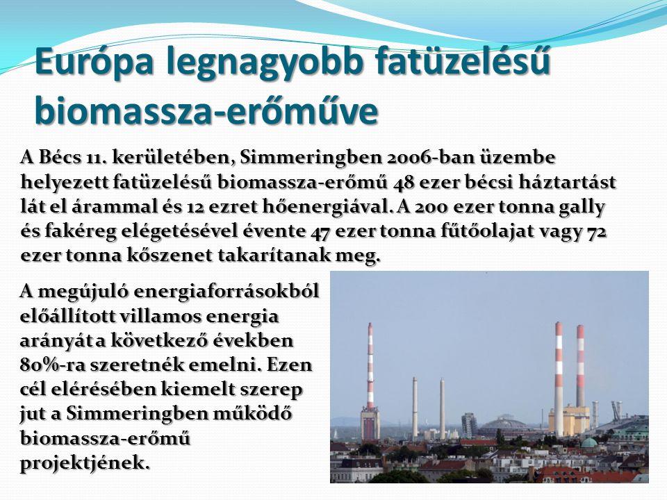 Európa legnagyobb fatüzelésű biomassza-erőműve A Bécs 11. kerületében, Simmeringben 2006-ban üzembe helyezett fatüzelésű biomassza-erőmű 48 ezer bécsi