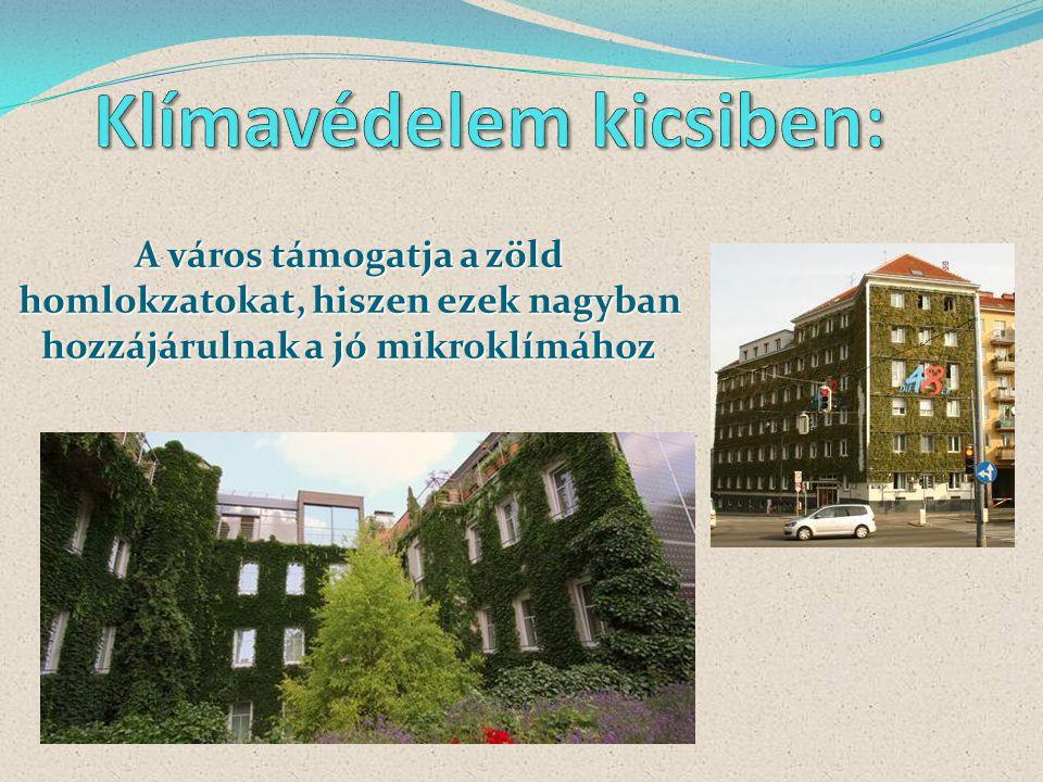 A város támogatja a zöld homlokzatokat, hiszen ezek nagyban hozzájárulnak a jó mikroklímához