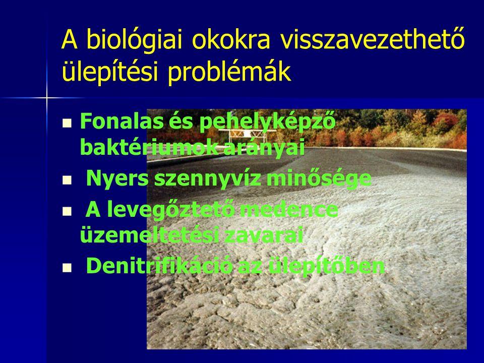 A biológiai okokra visszavezethető ülepítési problémák Fonalas és pehelyképző baktériumok arányai Nyers szennyvíz minősége A levegőztető medence üzeme