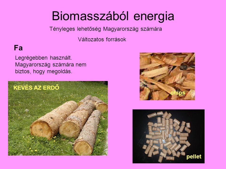 Biomasszából energia Tényleges lehetőség Magyarország számára Változatos források Fa Legrégebben használt.
