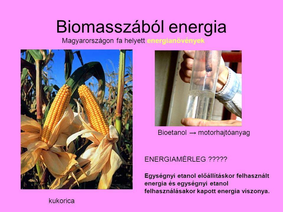 Biomasszából energia Magyarországon fa helyett energianövények kukorica Bioetanol → motorhajtóanyag ENERGIAMÉRLEG .