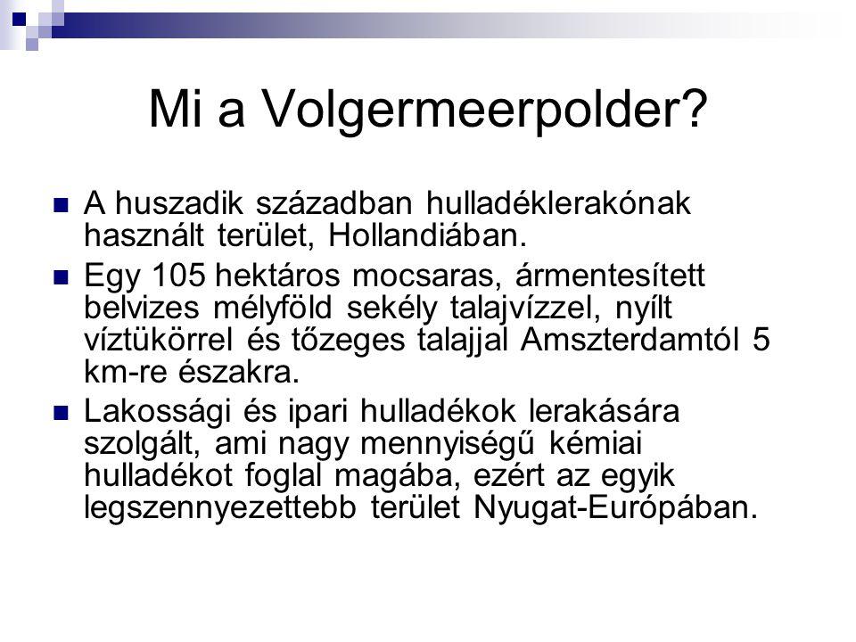 Mi a Volgermeerpolder? A huszadik században hulladéklerakónak használt terület, Hollandiában. Egy 105 hektáros mocsaras, ármentesített belvizes mélyfö