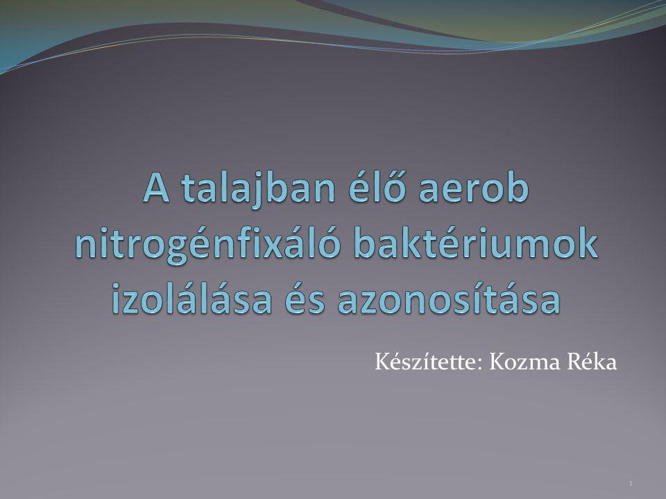 Nitrogénfixáló, diazotróf baktériumok: A nitrogén az egyik legfontosabb elem az élő szervezetek számára.