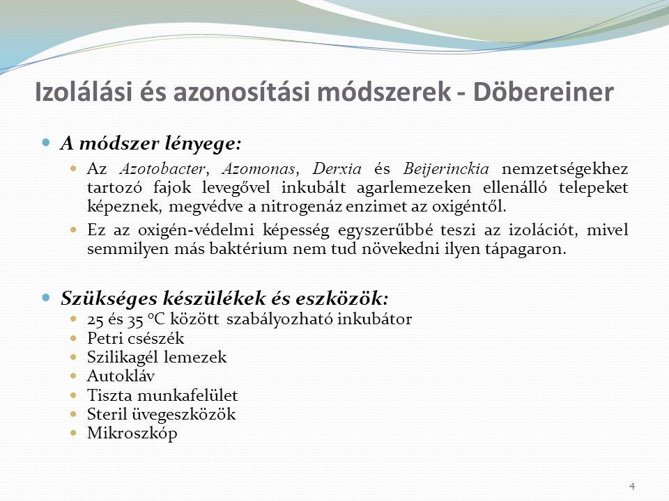 15 Endofita diazotrófok izolálása és azonosítása (Döbereiner, Cavalcante, Gillis, Reinhold-Hurek) A módszer lényege: A Herbaspirillum, Azoarcus nemzetségekhez tartozó fajok és az A.