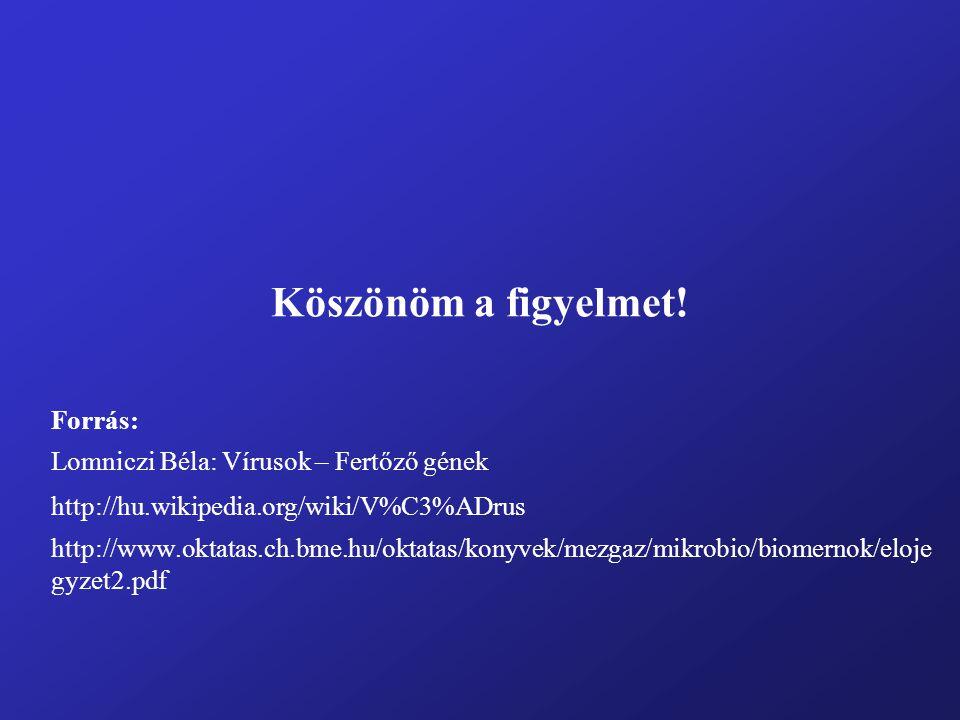 Köszönöm a figyelmet! Forrás: Lomniczi Béla: Vírusok – Fertőző gének http://hu.wikipedia.org/wiki/V%C3%ADrus http://www.oktatas.ch.bme.hu/oktatas/kony