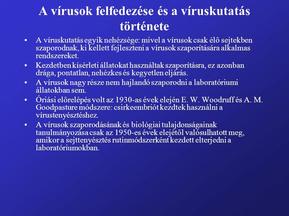 A vírusok felfedezése és a víruskutatás története A víruskutatás egyik nehézsége: mivel a vírusok csak élő sejtekben szaporodnak, ki kellett fejleszte