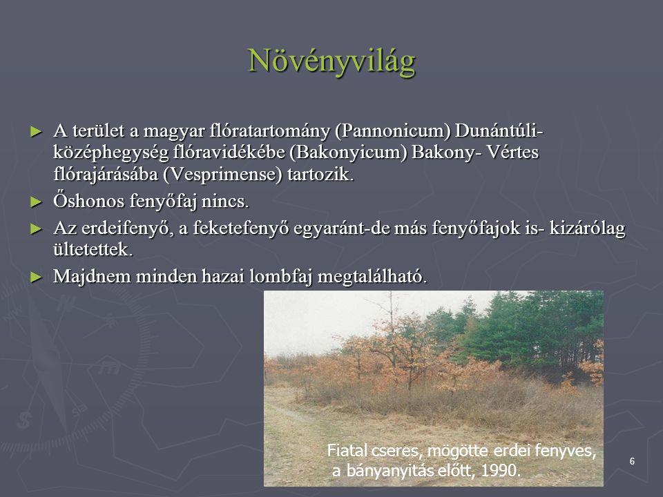 6 Növényvilág ► A terület a magyar flóratartomány (Pannonicum) Dunántúli- középhegység flóravidékébe (Bakonyicum) Bakony- Vértes flórajárásába (Vespri