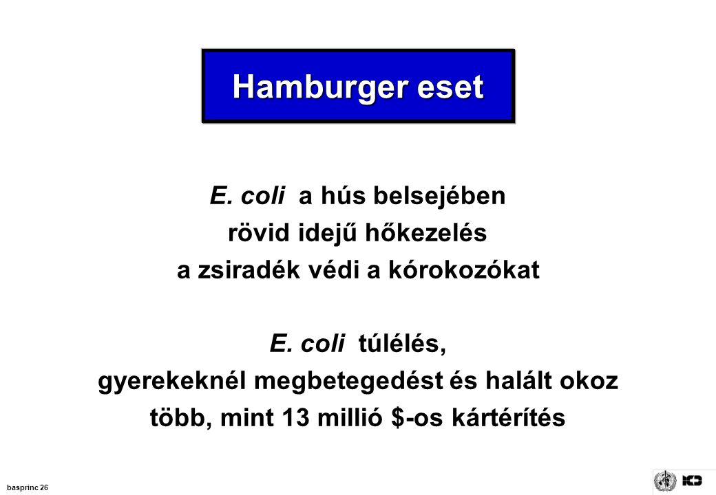 basprinc 26 Hamburger eset E. coli a hús belsejében rövid idejű hőkezelés a zsiradék védi a kórokozókat E. coli túlélés, gyerekeknél megbetegedést és