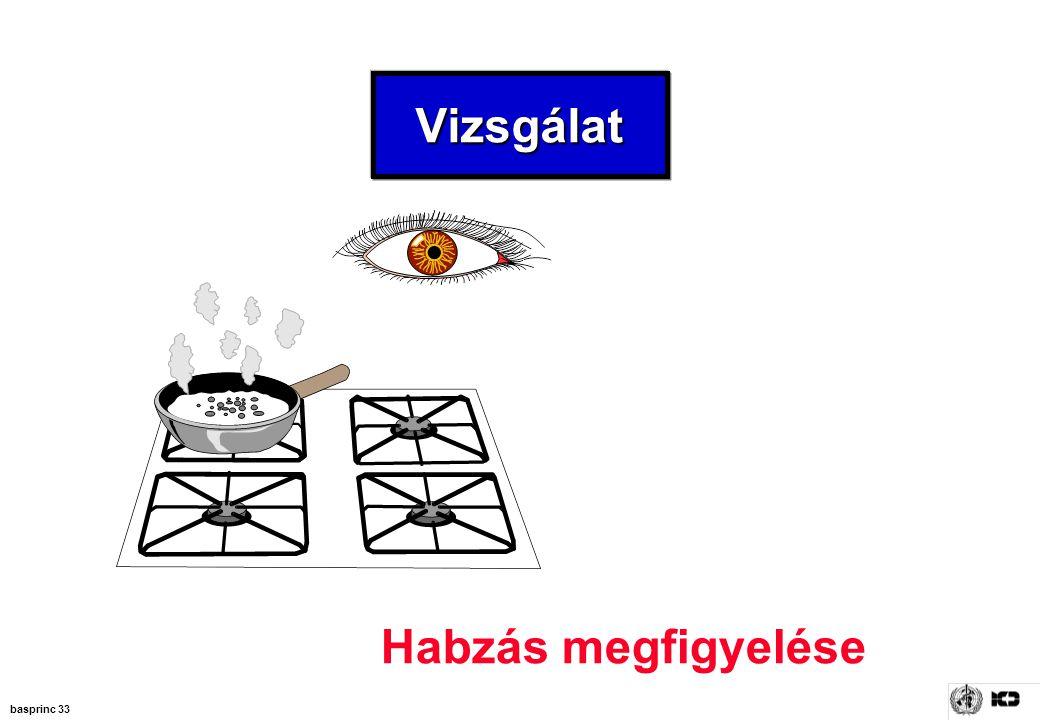 basprinc 33 VizsgálatVizsgálat Habzás megfigyelése