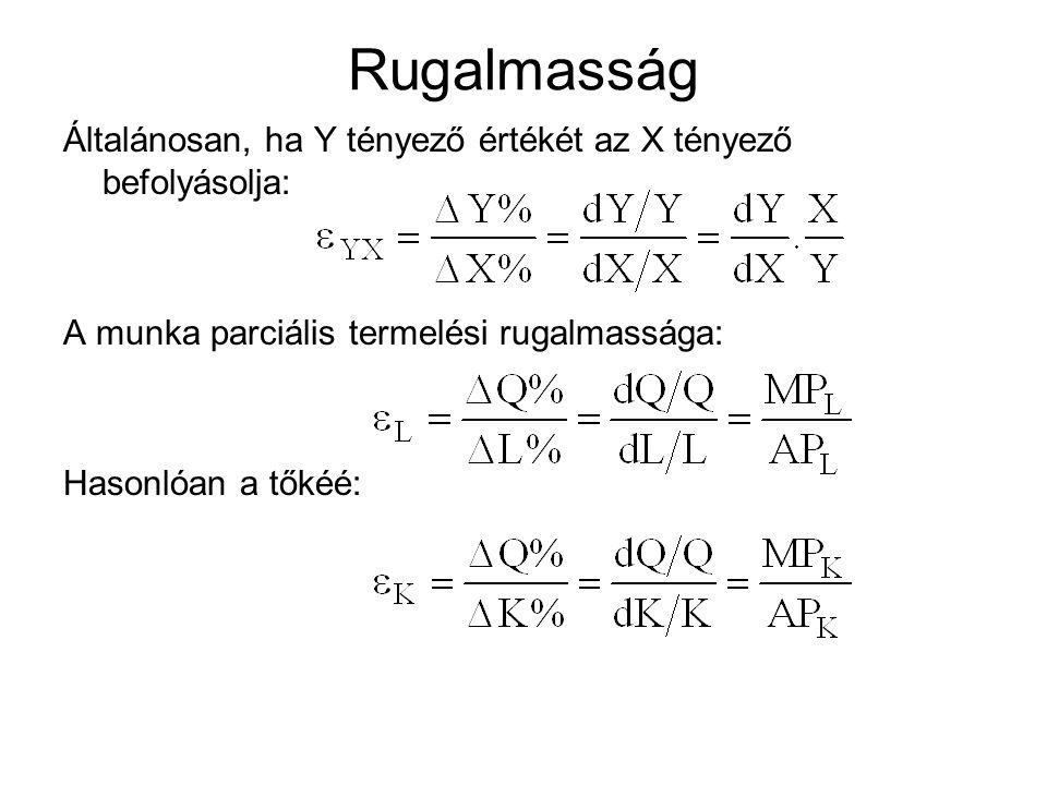 Rugalmasság Általánosan, ha Y tényező értékét az X tényező befolyásolja: A munka parciális termelési rugalmassága: Hasonlóan a tőkéé: