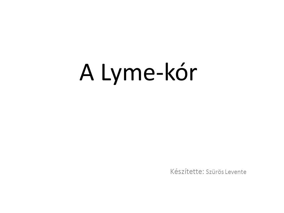 A Lyme-kór Készítette : Szürös Levente