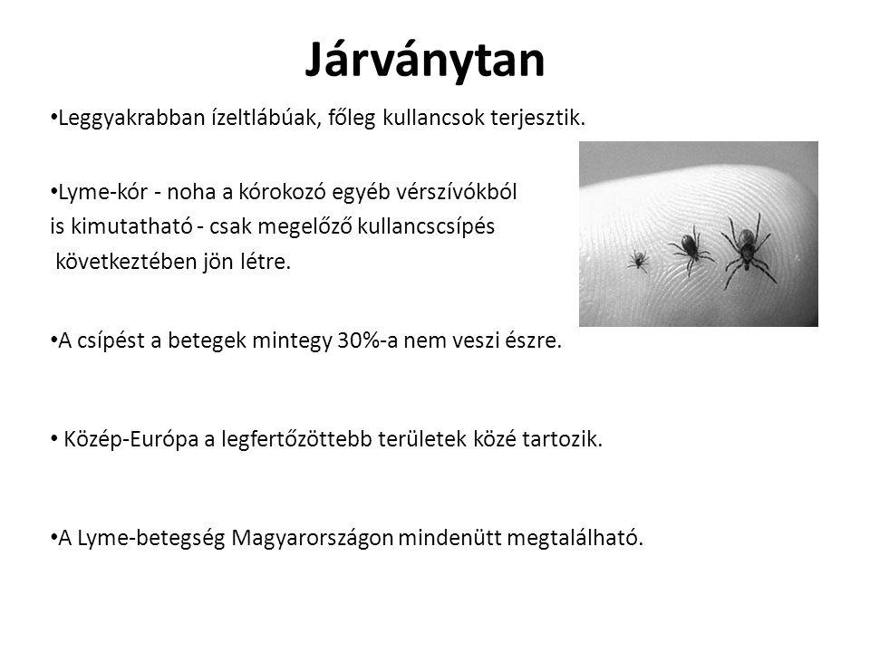 Járványtan Leggyakrabban ízeltlábúak, főleg kullancsok terjesztik. Lyme-kór - noha a kórokozó egyéb vérszívókból is kimutatható - csak megelőző kullan