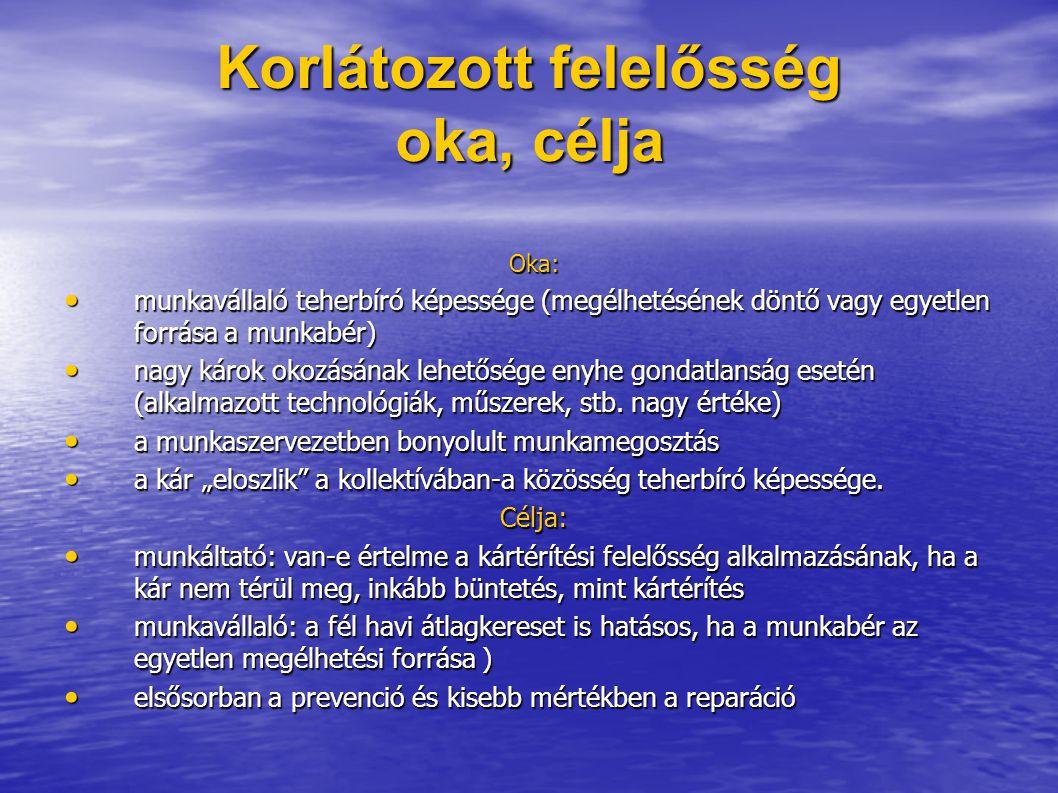 Korlátozott felelősség oka, célja Oka: munkavállaló teherbíró képessége (megélhetésének döntő vagy egyetlen forrása a munkabér) munkavállaló teherbíró