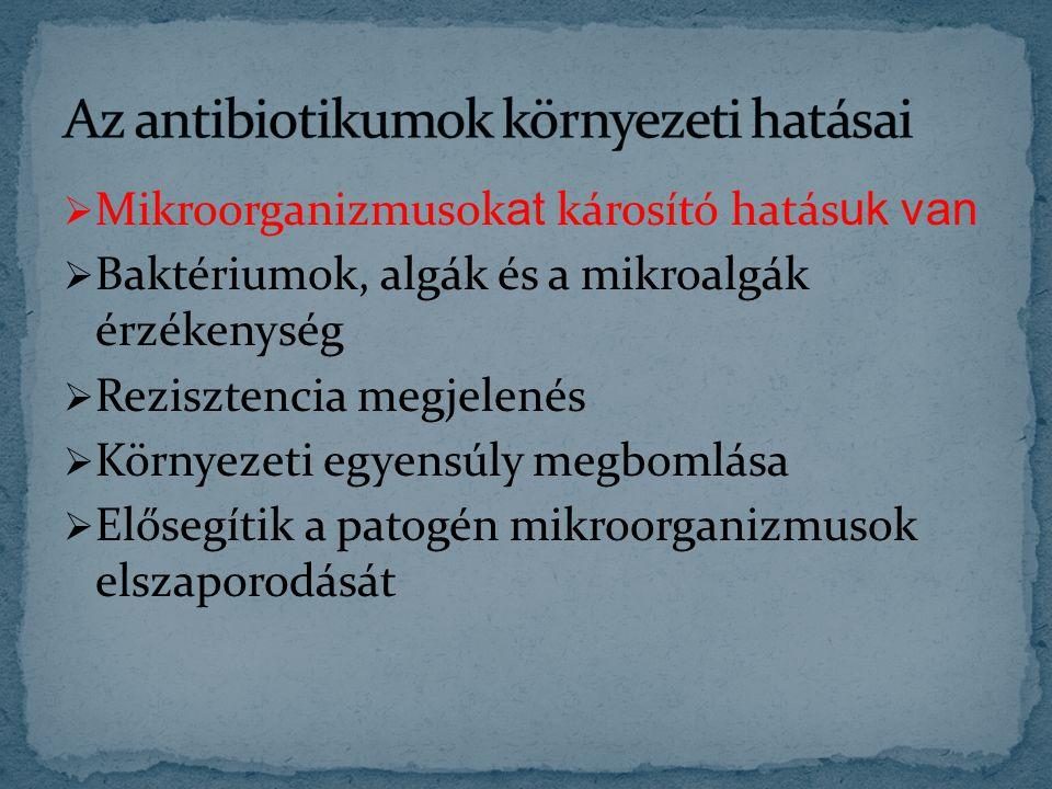  http://www.kfki.hu/~cheminfo/hun/teazo/miert/m01 /bakterium.html http://www.kfki.hu/~cheminfo/hun/teazo/miert/m01 /bakterium.html  http://oktatas.ch.bme.hu/oktatas/konyvek/mezgaz/m ikrobio/labor/mikranal.doc http://oktatas.ch.bme.hu/oktatas/konyvek/mezgaz/m ikrobio/labor/mikranal.doc  http://www.mtk.nyme.hu/~food/int- hu/mikro/segedletek/szoveg/II.ev/Gazdasagi_4gyakor lat.doc http://www.mtk.nyme.hu/~food/int- hu/mikro/segedletek/szoveg/II.ev/Gazdasagi_4gyakor lat.doc  http://www.orvtudert.ro/2007_80_2/PDF/2007-2- 16.pdf http://www.orvtudert.ro/2007_80_2/PDF/2007-2- 16.pdf