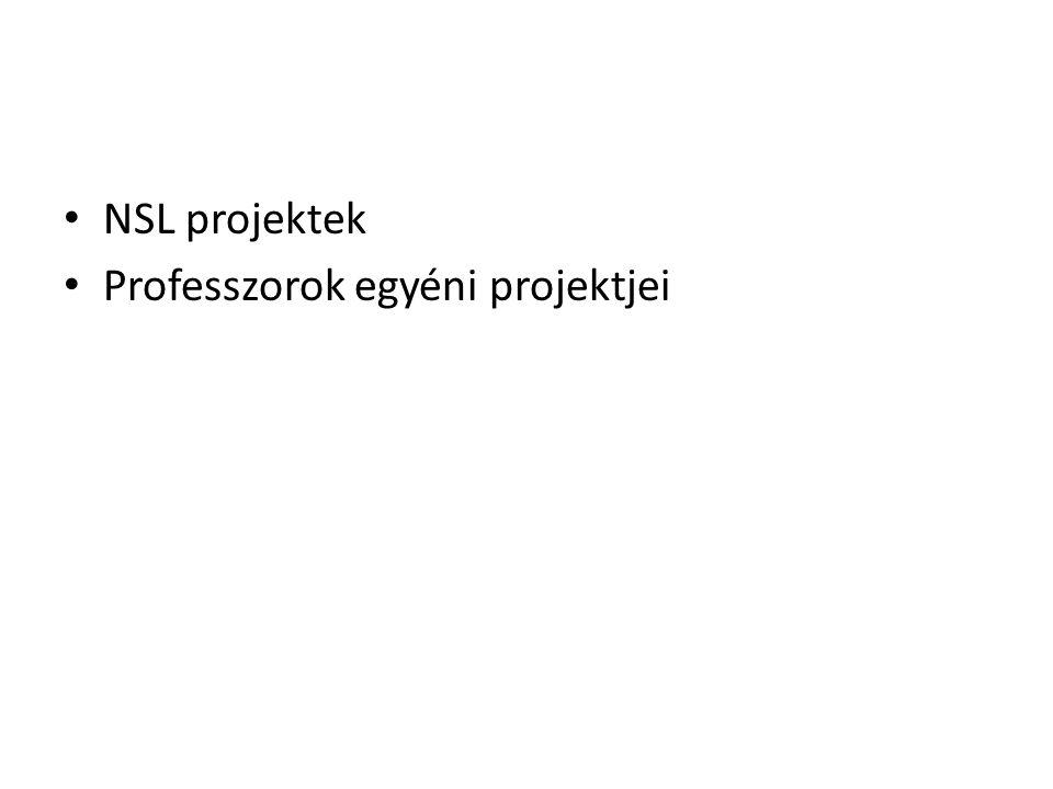 NSL projektek Professzorok egyéni projektjei