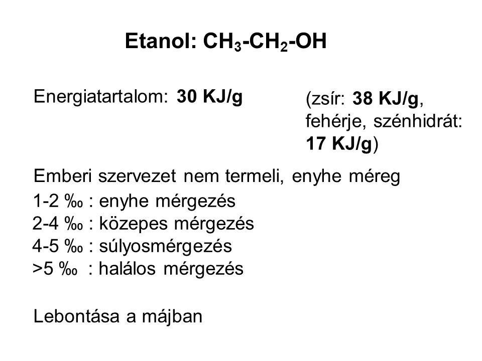 Etanol: CH 3 -CH 2 -OH Energiatartalom: 30 KJ/g (zsír: 38 KJ/g, fehérje, szénhidrát: 17 KJ/g) Emberi szervezet nem termeli, enyhe méreg Lebontása a má