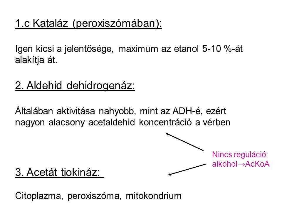 1.c Kataláz (peroxiszómában): Igen kicsi a jelentősége, maximum az etanol 5-10 %-át alakítja át. 2. Aldehid dehidrogenáz: Általában aktivitása nahyobb