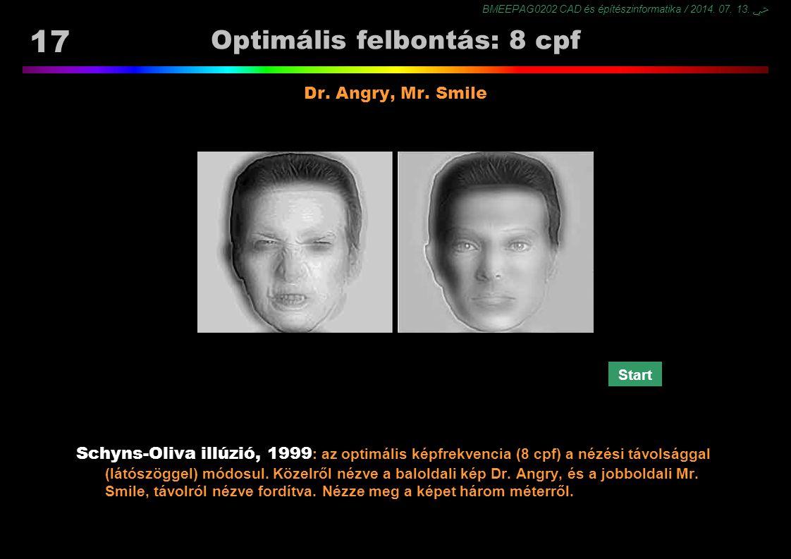 BMEEPAG0202 CAD és építészinformatika / 2014. 07. 13. ﴀ 17 Optimális felbontás: 8 cpf Schyns-Oliva illúzió, 1999 : az optimális képfrekvencia (8 cpf)