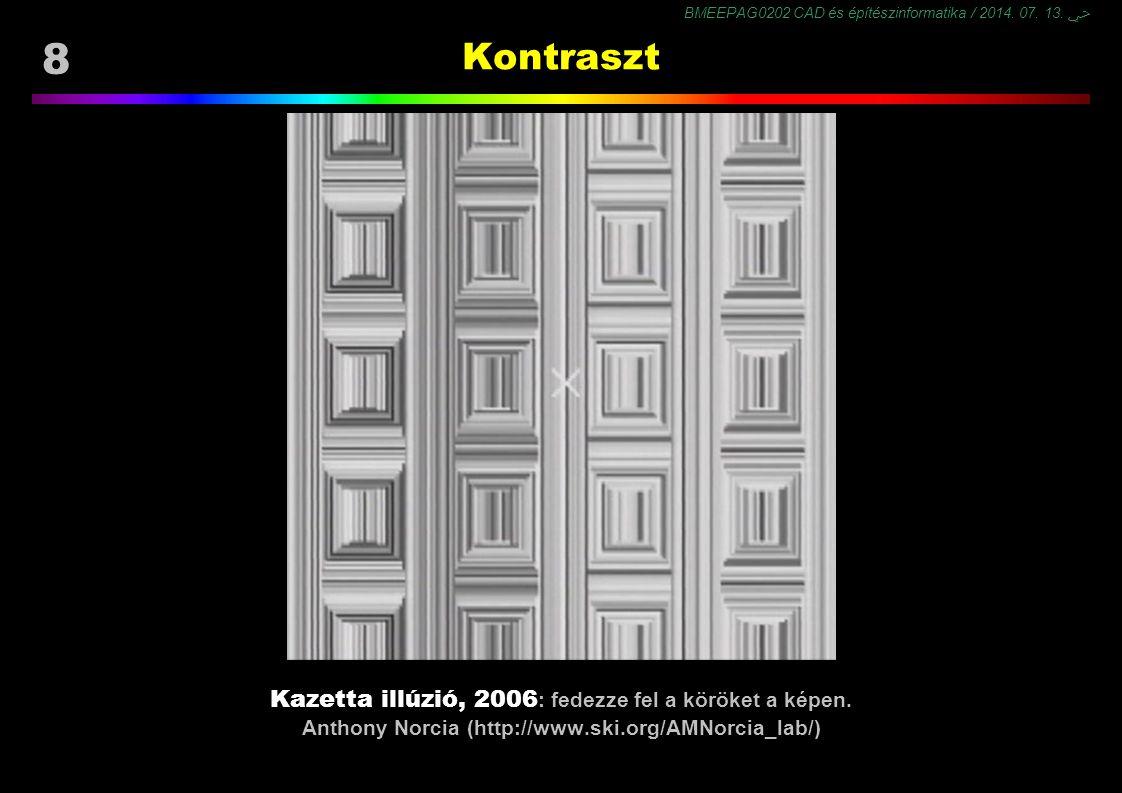 BMEEPAG0202 CAD és építészinformatika / 2014. 07. 13. ﴀ 8 Kontraszt Kazetta illúzió, 2006 : fedezze fel a köröket a képen. Anthony Norcia (http://www.