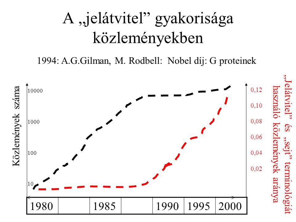 """A """"jelátvitel"""" gyakorisága közleményekben 19801985199019952000 Közlemények száma """"Jelátvitel"""" és """"sejt"""" terminológiát használó közlemények aránya 1994"""