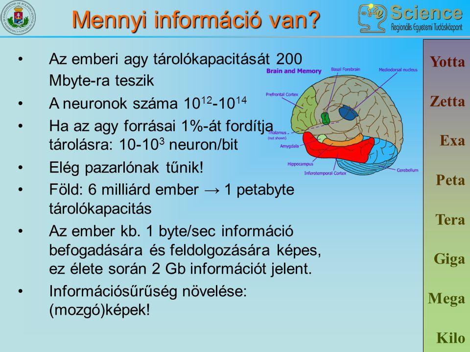 Mennyi információ van? Yotta Zetta Exa Peta Tera Giga Mega Kilo Az emberi agy tárolókapacitását 200 Mbyte-ra teszik A neuronok száma 10 12 -10 14 Ha a