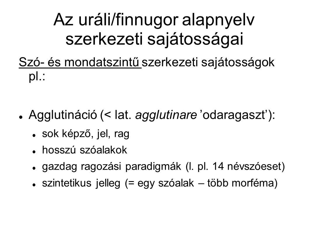 Az uráli/finnugor alapnyelv szerkezeti sajátosságai Jobbszél-elv: szuffixálás (szuffigálás) prefixálás helyett alaptag a jobbszélen áll csak a jobbszélen jelölődnek az NP morfoszintaktikai jegyei, azaz: nincs jelző–jelzett szó kongruencia SOV szórend (ti.