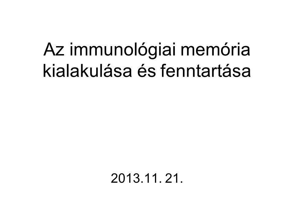 Az immunológiai memória kialakulása és fenntartása 2013.11. 21.