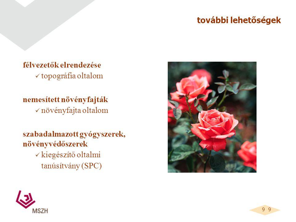 9 9 további lehetőségek félvezetők elrendezése topográfia oltalom nemesített növényfajták növényfajta oltalom szabadalmazott gyógyszerek, növényvédőszerek kiegészítő oltalmi tanúsítvány (SPC)