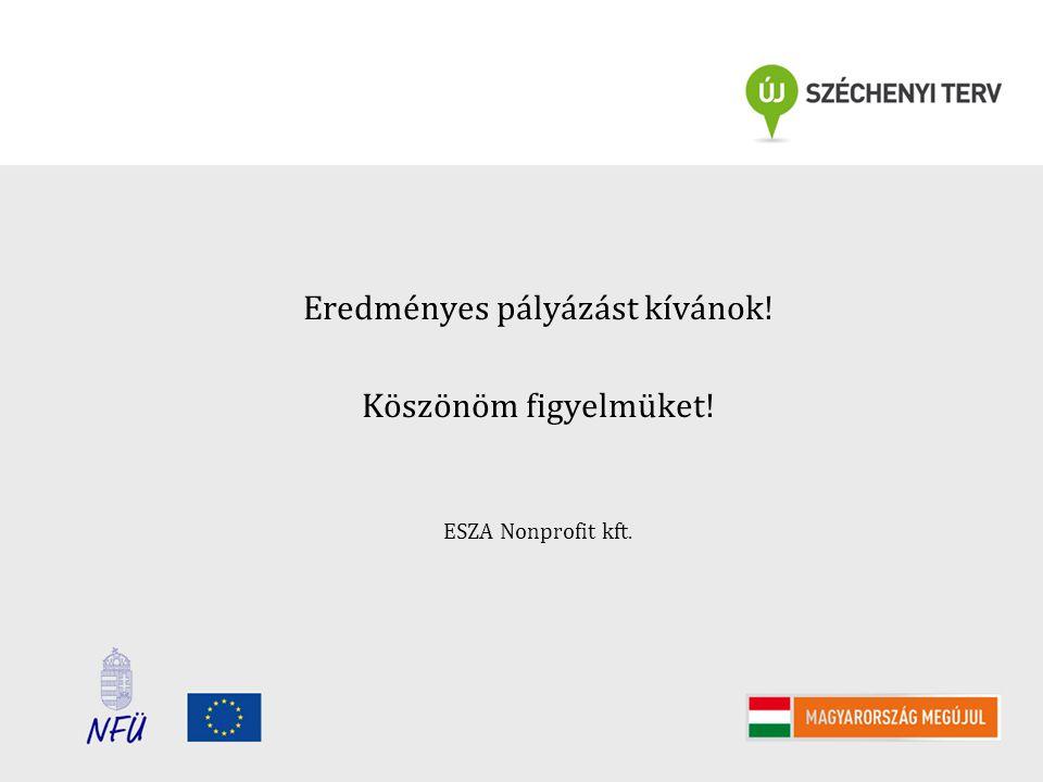 Eredményes pályázást kívánok! Köszönöm figyelmüket! ESZA Nonprofit kft.