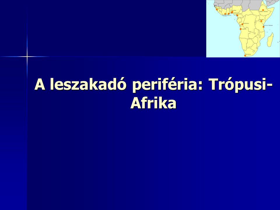 A leszakadó periféria: Trópusi- Afrika