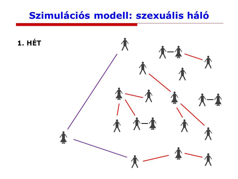 Szimulációs modell: szexuális háló 1. HÉT