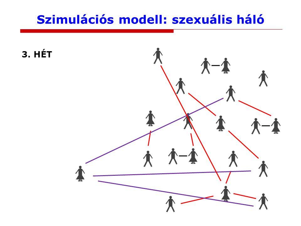 Szimulációs modell: szexuális háló 3. HÉT