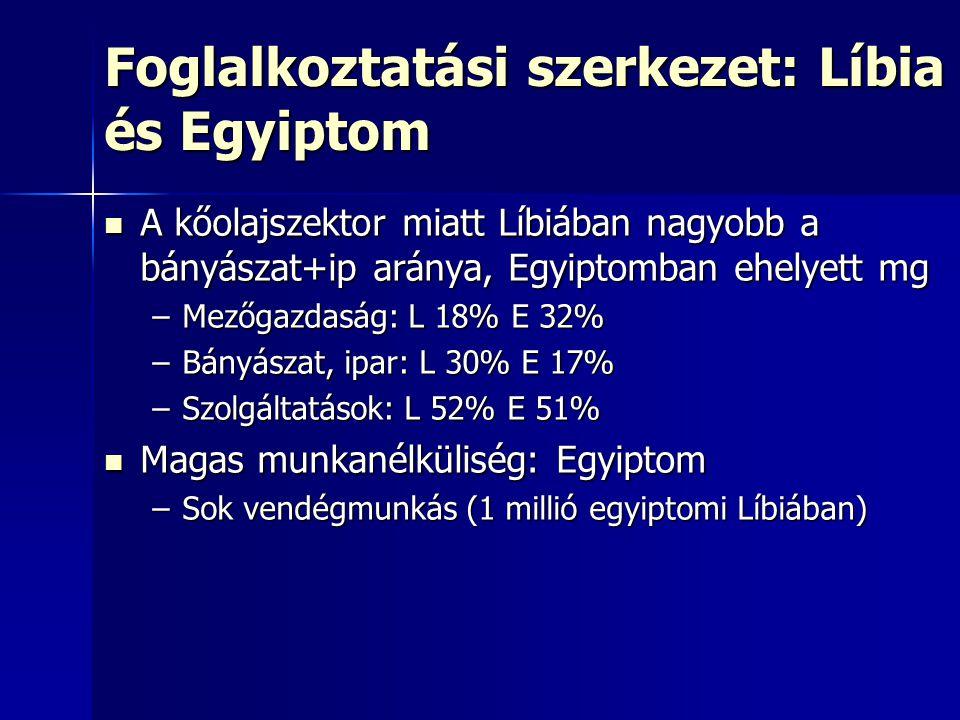 Foglalkoztatási szerkezet: Líbia és Egyiptom A kőolajszektor miatt Líbiában nagyobb a bányászat+ip aránya, Egyiptomban ehelyett mg A kőolajszektor miatt Líbiában nagyobb a bányászat+ip aránya, Egyiptomban ehelyett mg –Mezőgazdaság: L 18% E 32% –Bányászat, ipar: L 30% E 17% –Szolgáltatások: L 52% E 51% Magas munkanélküliség: Egyiptom Magas munkanélküliség: Egyiptom –Sok vendégmunkás (1 millió egyiptomi Líbiában)