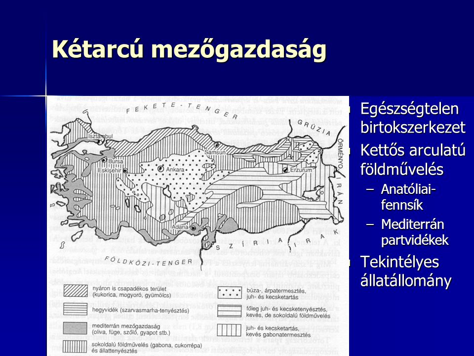 Kétarcú mezőgazdaság Egészségtelen birtokszerkezet Egészségtelen birtokszerkezet Kettős arculatú földművelés Kettős arculatú földművelés –Anatóliai- fennsík –Mediterrán partvidékek Tekintélyes állatállomány Tekintélyes állatállomány