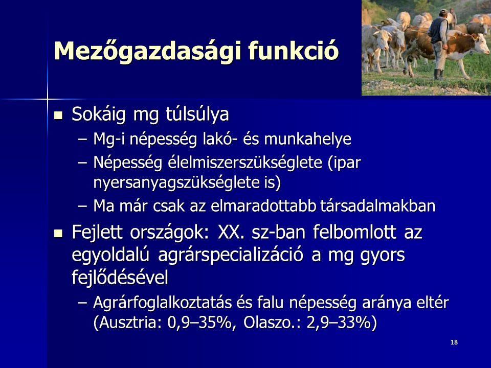 18 Mezőgazdasági funkció Sokáig mg túlsúlya Sokáig mg túlsúlya –Mg-i népesség lakó- és munkahelye –Népesség élelmiszerszükséglete (ipar nyersanyagszükséglete is) –Ma már csak az elmaradottabb társadalmakban Fejlett országok: XX.