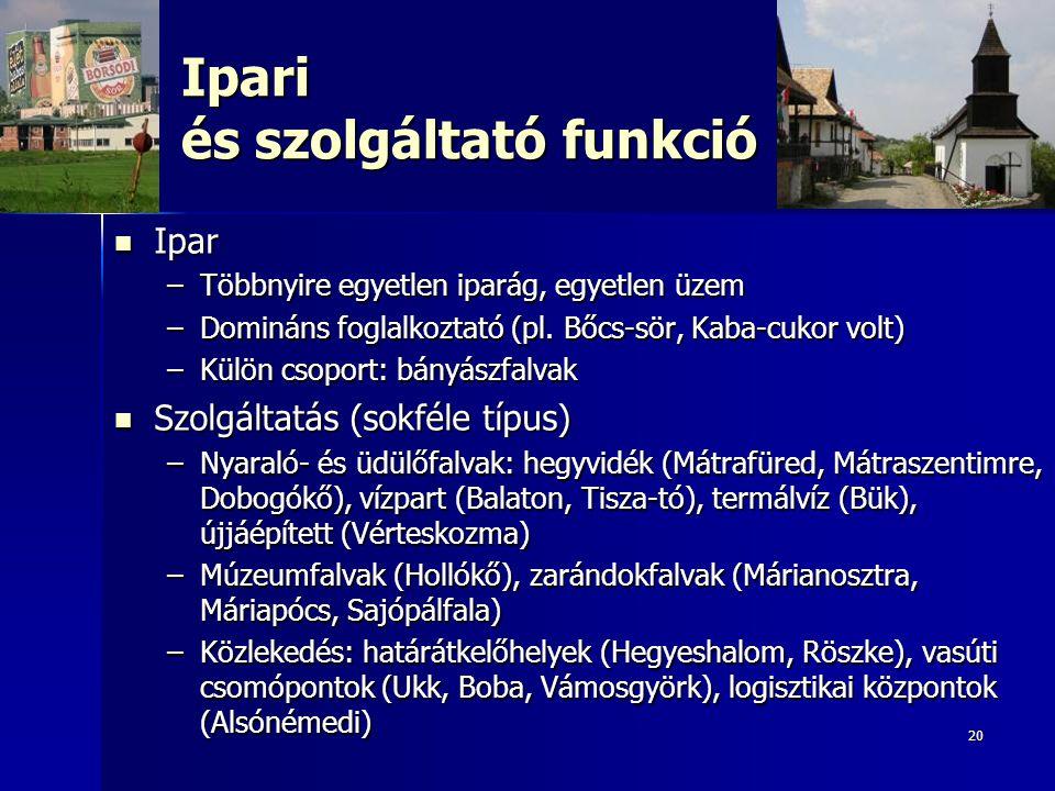 20 Ipari és szolgáltató funkció Ipar Ipar –Többnyire egyetlen iparág, egyetlen üzem –Domináns foglalkoztató (pl.