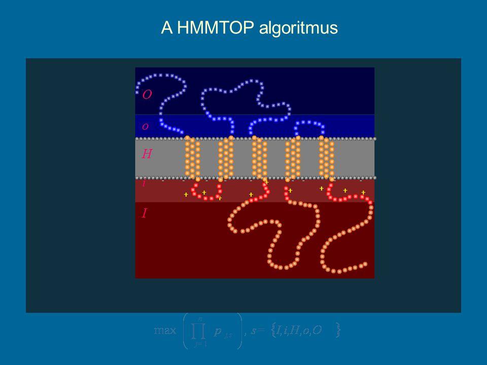 H i I o O A HMMTOP algoritmus