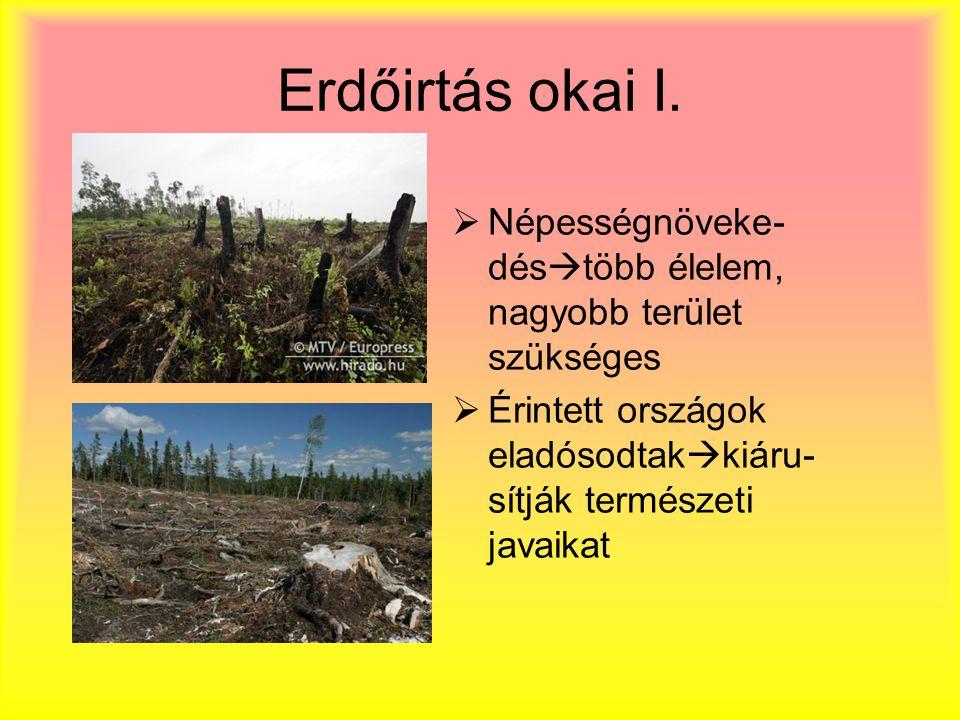 Erdőirtás okai I.