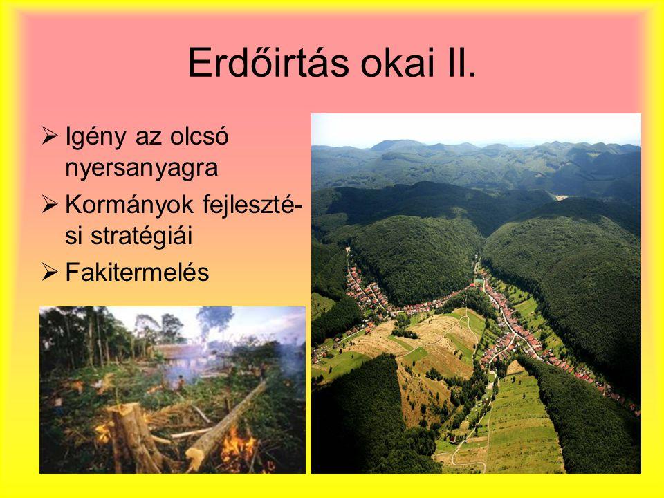 Erdőirtás okai II.