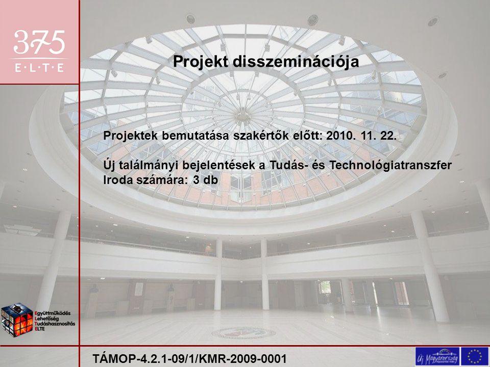 Projektek bemutatása szakértők előtt: 2010. 11. 22.
