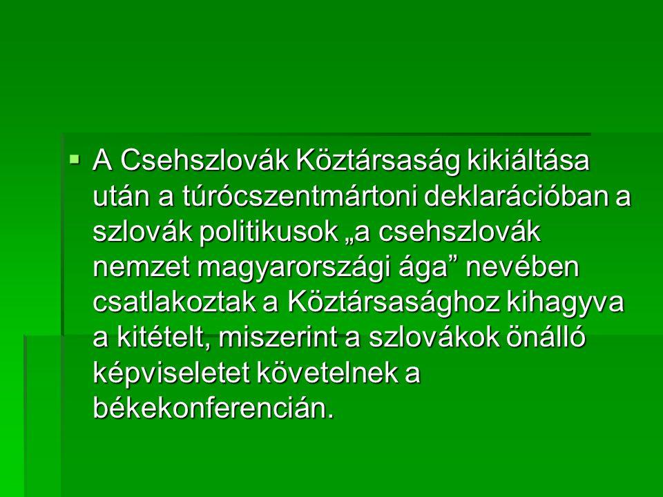 """ A Csehszlovák Köztársaság kikiáltása után a túrócszentmártoni deklarációban a szlovák politikusok """"a csehszlovák nemzet magyarországi ága nevében csatlakoztak a Köztársasághoz kihagyva a kitételt, miszerint a szlovákok önálló képviseletet követelnek a békekonferencián."""