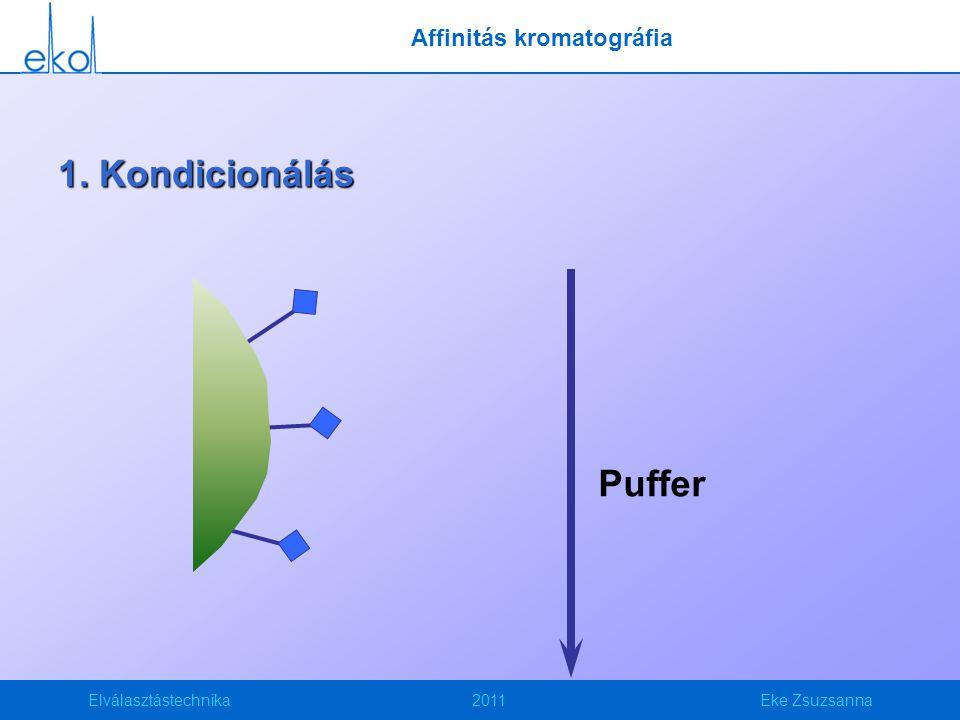 Elválasztástechnika2011Eke Zsuzsanna 1. Kondicionálás Puffer Affinitás kromatográfia