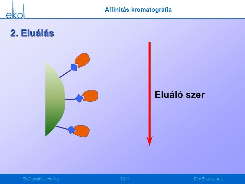 Elválasztástechnika2011Eke Zsuzsanna Eluáló szer 2. Eluálás Affinitás kromatográfia