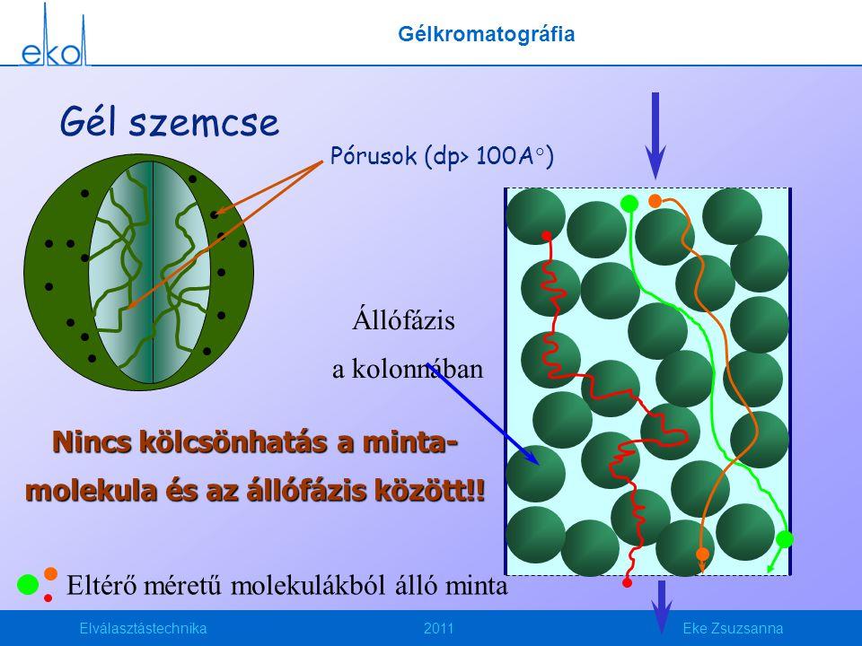 Elválasztástechnika2011Eke Zsuzsanna Pórusok (dp> 100A  ) Gél szemcse Eltérő méretű molekulákból álló minta Állófázis a kolonnában Nincs kölcsönhatás