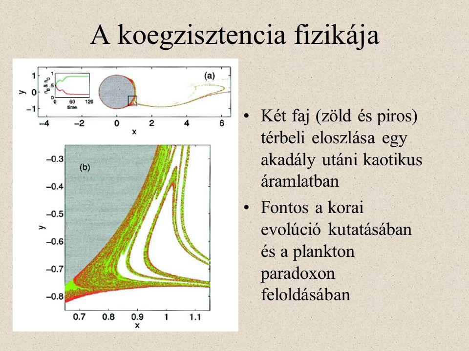 A koegzisztencia fizikája Két faj (zöld és piros) térbeli eloszlása egy akadály utáni kaotikus áramlatban Fontos a korai evolúció kutatásában és a pla