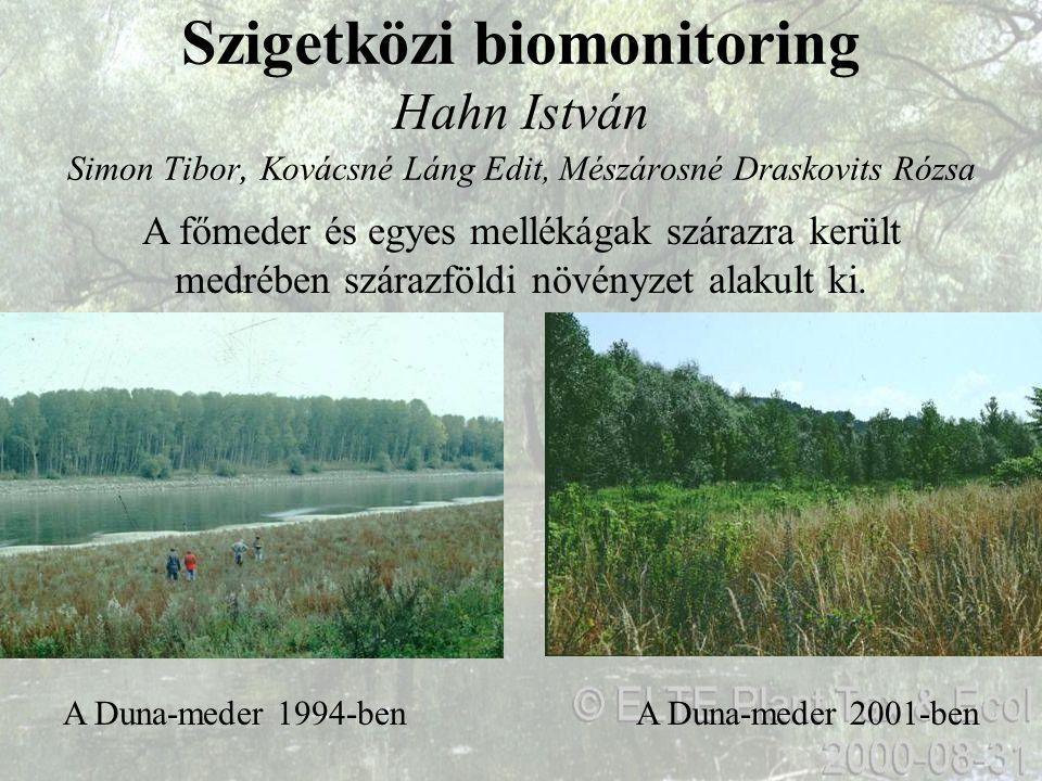 Szigetközi biomonitoring Hahn István Simon Tibor, Kovácsné Láng Edit, Mészárosné Draskovits Rózsa A Duna-meder 2001-benA Duna-meder 1994-ben A főmeder
